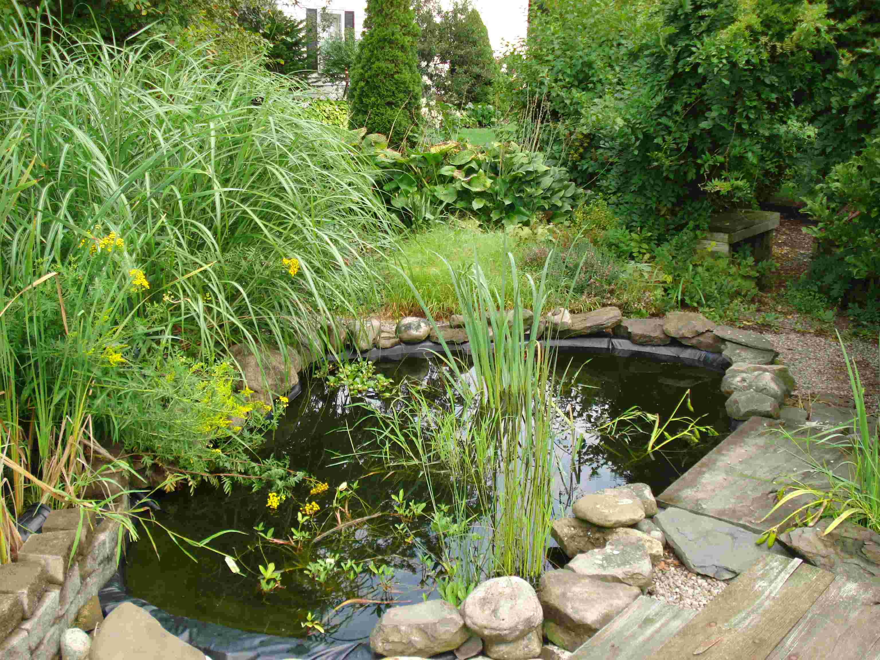 Landscaping Water Features Supply Center Syracuse Cortland